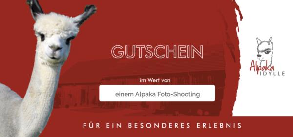 Alpaka Gutschein Fotoshooting 1 Person